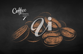 Vector chalk drawn sketch of pile of coffee beans on chalkboard background.