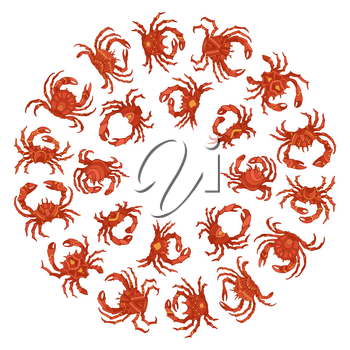 Hand-drawn red crabs isolated on white background.