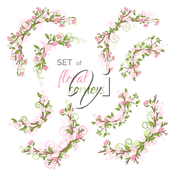 Cherry blossoms and leaves on tree branches. Hand-drawn flourishes. Isolated on white background.