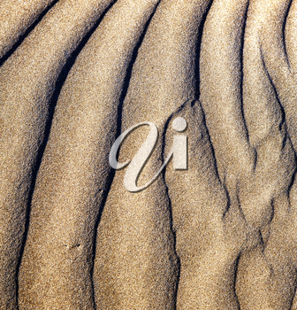 texture abstract of a  dry sand and the beach lanzarote spain