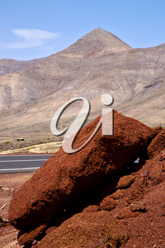 volcanic timanfaya  red rock stone sky  hill and summer in los volcanes lanzarote spain plant flower bush
