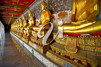 siddharta  in the temple bangkok asia   thailand abstract cross        step    wat   palaces