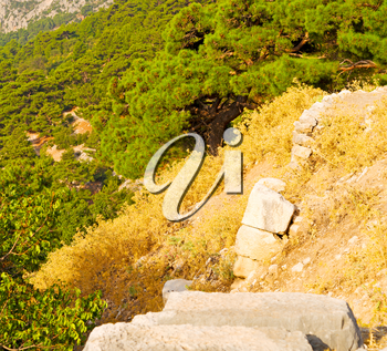 anatolia    from     the hill in asia turkey termessos old architecture and nature