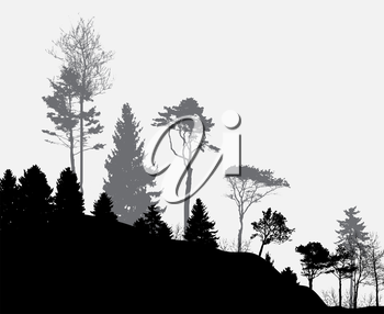Image of Nature. Tree Silhouette. Eco banner. Vector Illustration EPS10