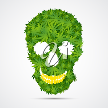 Abstract Cannabis Skull Isolated Vector Illustration EPS10