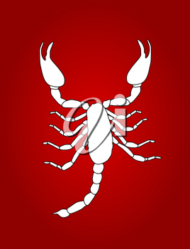 White Scorpion Silhouette Icon Vector Illustration EPS10