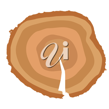 Stump. Muzzle. You can Determine the Age of the Tree. Vector Illustration.