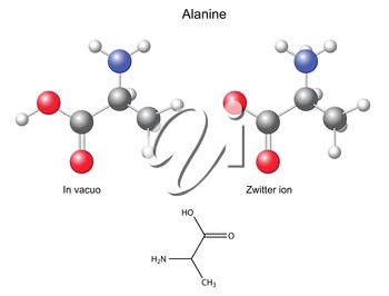 Alanine Ala - chemical structural formula and models, 2d and 3d vector, eps 8