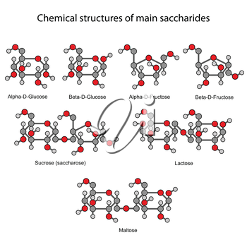 Chemical formulas of main sugars: mono- and disaccharides, 2d illustration, isolated on white background, rounds & sticks style, vector, eps 8