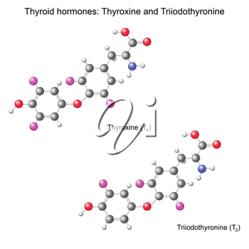 Structural chemical model of  thyroid hormones, 3d illustration, isolated, vector, eps 8