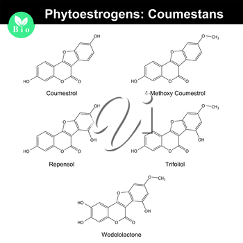 Phytoestrogens of coumestane group, chemical formulas and molecular models, 2d chemical vector, eps 8