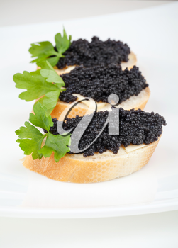 Small sandwiches with black caviar on white plate