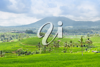 Beautiful rice terraces and mountains on Bali island, Indonesia