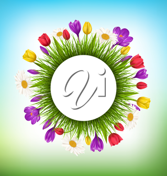 Circle frame with green grass and flowers. Floral nature background