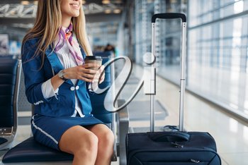 Stewardess with coffee and suitcase sitting on seat in waiting area in airport. Air hostess with baggage, flight attendant with hand luggage, aviatransportations job