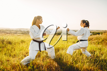 Two female karate in kimono training combat skill in summer field. Martial art workout outdoor, technique practice, photo manipulation with background