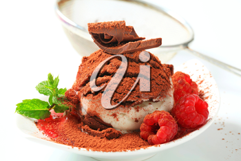Vanilla chocolate ice cream with raspberries sprinkled with cocoa powder