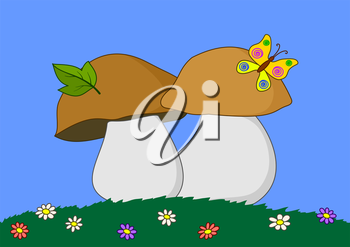 Cartoon, mushrooms: flowers, green grass, butterfly. Vector
