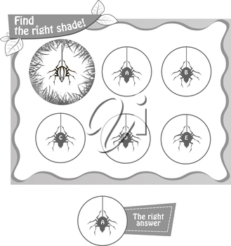 visual game for children and adults. Task the find right shadow spider. black and white vector illustration