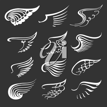 Doodle angel wings set. Contour wing icons. Angels and bird symbols. Vector contour illustration.