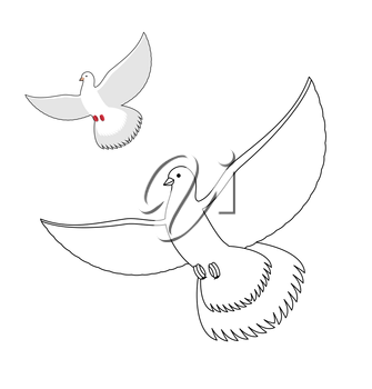 White Dove coloring book. Flying white pigeon. Contour bird waving wings. Childrens coloring book with bird.