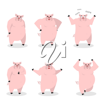 Pig set of different poses. Expression of wild boar emotions. Farm animal evil and good. Sad and happy beast. Aggressive and surprised. Farm yoga