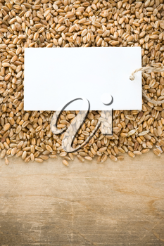 wheat grain and tag price on wood background