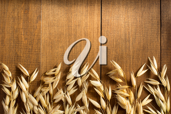 ears of oat on wooden background