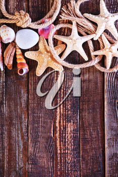 color sea shells and starfish, summer background