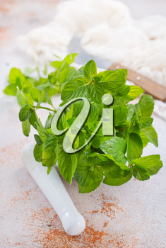fresh mint leaf in white bowl and on a table