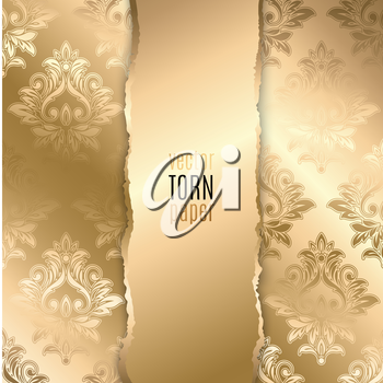 Vector illustration Gold torn paper. Template background