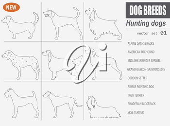 Hunting dog breeds set icon isolated on white . Outline, linear version. Vector illustration