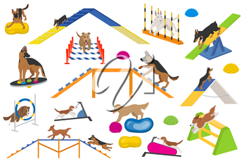 Dog playground equipment set. Colour flat playing dogs design. Vector illustration