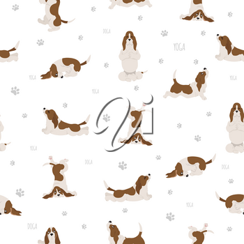 Yoga dogs poses and exercises. Basset hound seamless pattern. Vector illustration