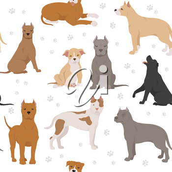 American staffordshire terrier dogs set. Color varieties, different poses. Seamless pattern. Vector illustration