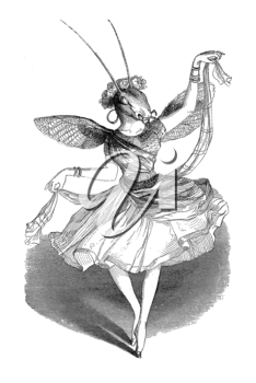 Royalty Free Clipart Image of a Ballerina Bug
