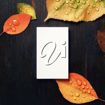 Photo of blank vertical business card and autumn leaves on wooden background. Template for branding ID. Flat lay.