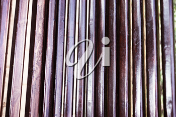 Vertical brown wood texture background