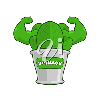 Strong spinach tin. Powerful herbs for muscle growth. Bank bodybuilder salad