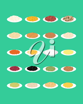 Cereal in plate set. Rice and lentils. Red beans and peas. Corn and barley gritz. Millet and cuscus. Oat and buckwheat. Bulgur and wheat. Healthy food for breakfast. Vector illustration