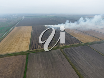 Burning straw in the fields after harvesting wheat crop. The burning of rice straw in the fields. Smoke from the burning of rice straw in checks. Fire on the field.