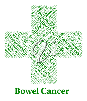 Bowel Cancer Representing Large Intestines And Disease
