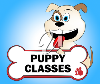 Puppy Classes Meaning Educated Classrooms And Pets
