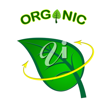 Eco Friendly Indicating Go Green And Ecology