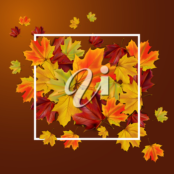 Abstract autumn background with colorful leaves, vector illustration