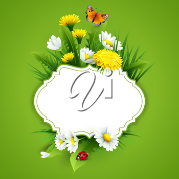 Fresh spring background with grass, dandelions and daisies. Vector