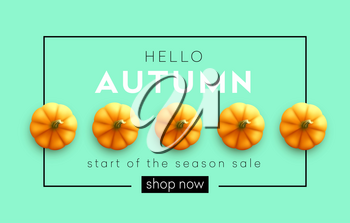 Fashionable modern autumn background with bright autumn pumpkin for design of posters, flyers, banners.  Vector illustration EPS10