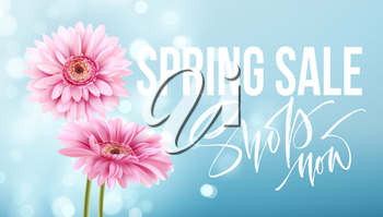Pink gerbera daisies on a blue bokeh background. Spring sale lettering. Vector illustration EPS10