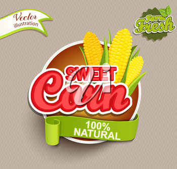 Sweet Corn logo lettering typography food label or sticker. Concept for farmers market, organic food, natural product design.Vector illustration.