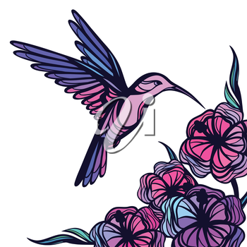 Flying tropical hummingbird on white background with flowers.